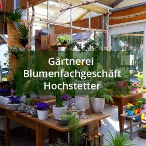 Gärtnerei u. Blumenfachgeschäft Hochstetter